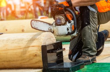 Woodcutter saw