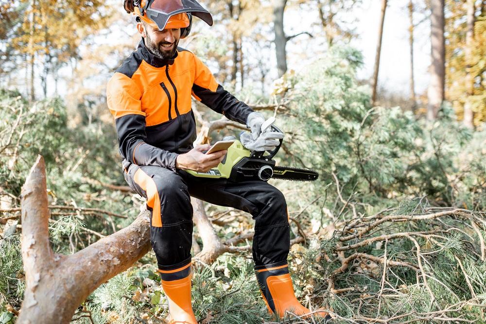 lumberman on a tree