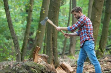 lumberjack chopping wood